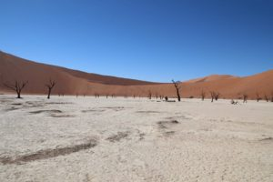 Read more about the article Deadvlei – Namibia & an African Massage