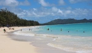 Read more about the article Full day Oahu scenic drive – Discover Hawaii