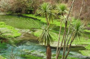 Read more about the article New Zealand North island 10 Day itinerary